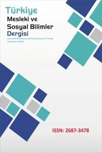 Türkiye Mesleki ve Sosyal Bilimler Dergisi